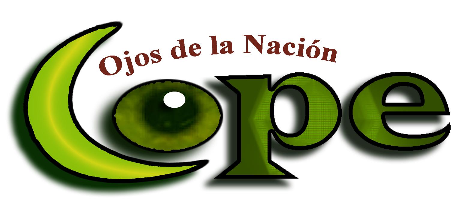 Ciudadanos Observadores de Procesos Electorales (COPE)